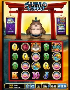 sumo-kitty
